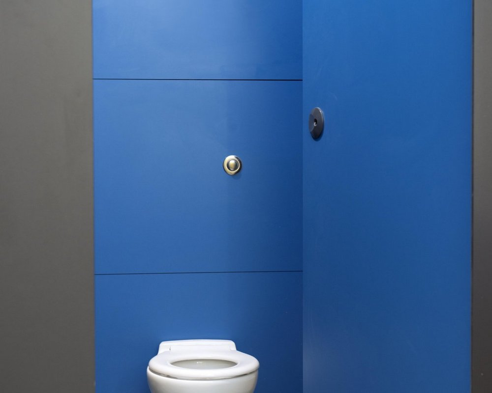 Primrose Hill Quadro toilet cubicle with door open and IPS with back to wall WC and push button flush